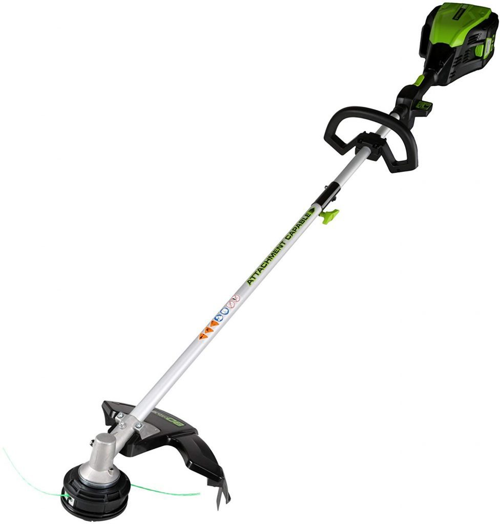 Greenworkds pro cordless - photo 1