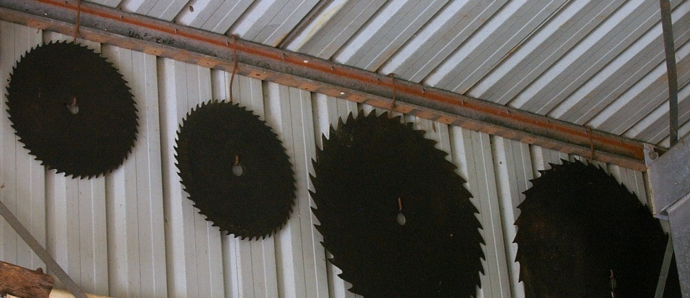 circular saw blades of different sizes