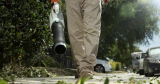 Best Electric Leaf Blower: A Complete Buyer's Guide