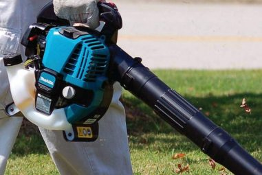 Best Gas Leaf Blower Deals: Top Rated Gas Leaf Blowers Reviews & Buyer's Guide