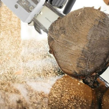 Best 18 inch Chainsaw: Top Tools & Buyer's Guide