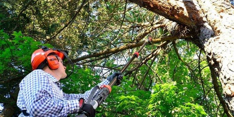 Best Electric Pole Saw: Top 10 Models & Detailed Guide