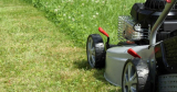 How Often Should You Cut Your Grass? – A Lawn Cutting Guide